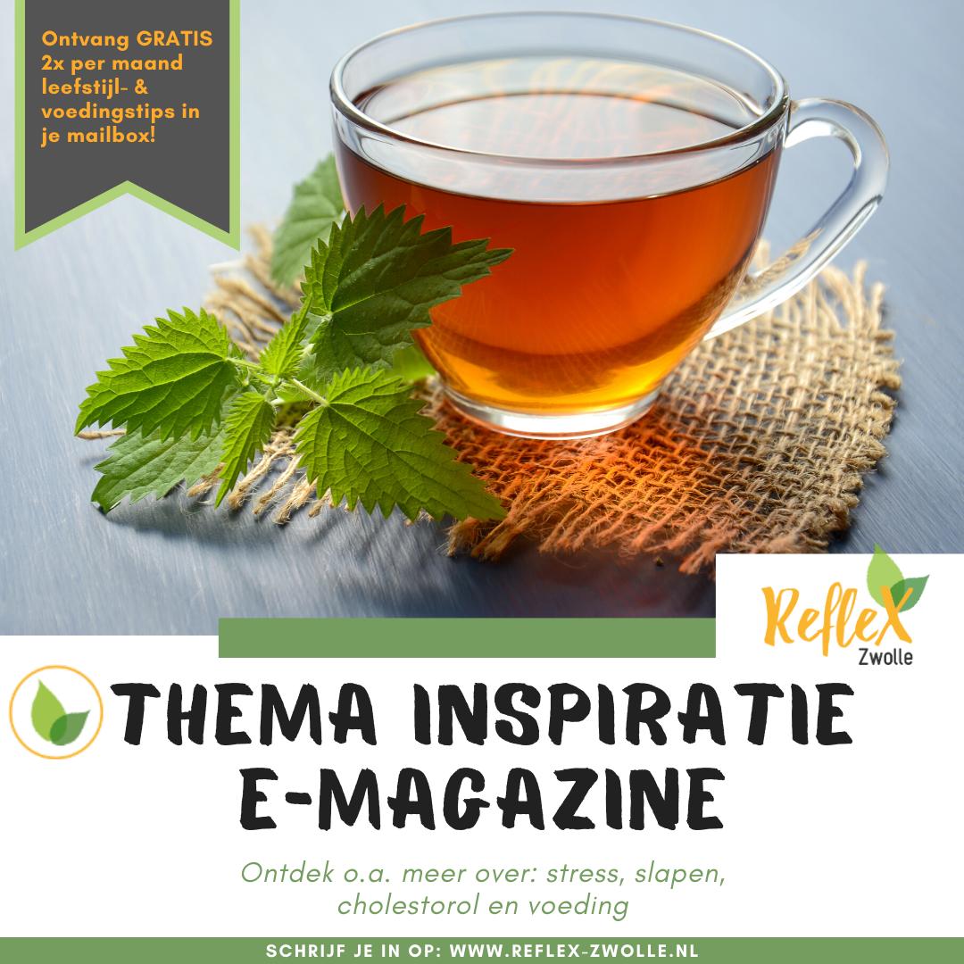 thema inspiratie e-magazine reflex-leren